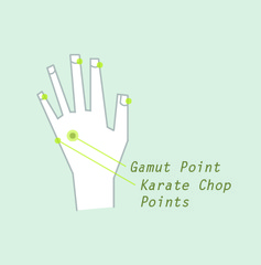Gamut Point Diagram | Personal Change Therapies