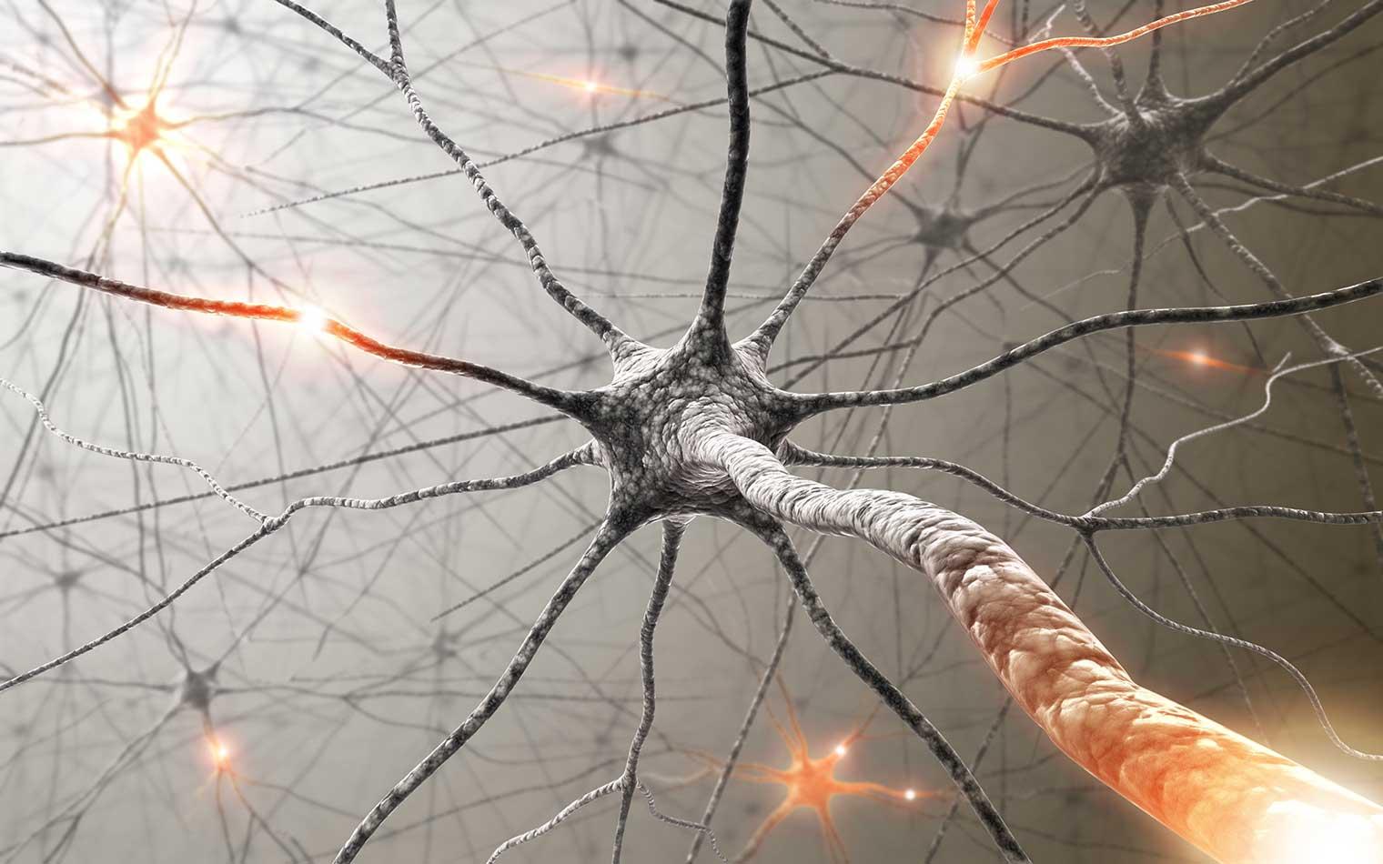 TRE Tremors Trauma Release stimulates the nerve endings, Kate Munden